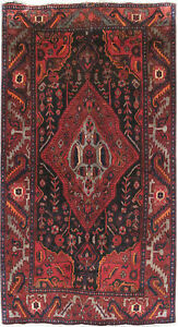 Persian Hand Knotted 4 X 8 Rug Genuine Genuine Rug