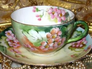 Tea Cup And Saucer Hand Painted Pink Floral Bavaria Germany Teacup