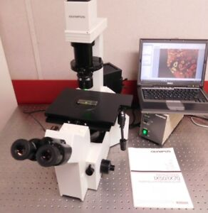 Olympus Microscope Ix 50 Inverted Fluorescence Phase Contrast 18mp