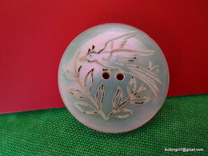 5302 Beautiful Old Engraved Flying Bird Over Plants Medium Shell Button 7 8