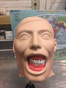 Dental Manikin Columbia Dentoform new Shroud And Holder Included