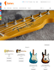 Guitars Website Business For Sale Unlimited Stock