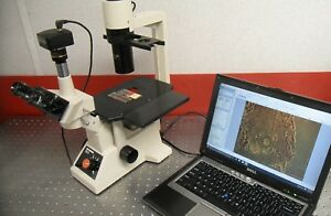 Olympus Ck2 Inverted Microscope Phase Contrast Trinocular Camera 10mp