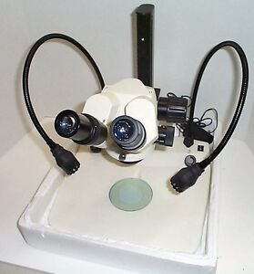 Amg Fisher Stereozoom Microscope And Led Lower upper Illumination 6 60x New