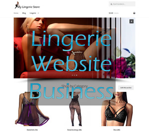 Lingerie Ecommerce Turnkey Website Amazon Affiliate Lingerie Website Business