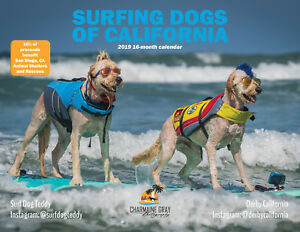 2019 Surfing Dogs Of California Wall Calendar 16 Month 36 Full Color Pages
