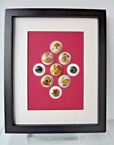 Collection Of 9 Antique Japanese Satsuma Porcelain Buttons In Frame 1890 1920 S