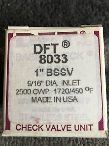 Dft Stainless Steel Check Valve Unit 1 bssv