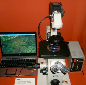 Nikon Diaphot Tmd Fluorescence Phase Contrast Inverted Microscope