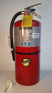 Buckeye 12350 Fire Extinguisher abc 20 Lb 21 1 4 In h G6423895