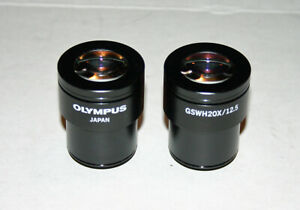 Olympus Gswh20x 12 5 Microscope Eyepieces Pair Excellent