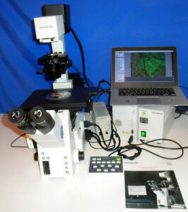 Olympus Ix81 Inverted Microscope Fluorescence Live Cell Microscope 10mp