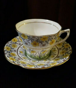 Vintage Rosina Tea Cup Saucer Bone China England Chintz Collection Daises