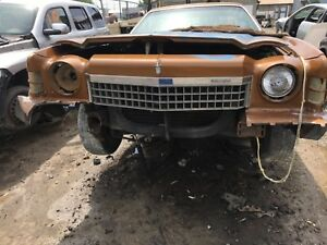 1974 Monte Carlo Grille Oem