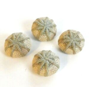 Set Of 4 Antique Vintage Beige Needlework Canvass Covered Buttons