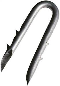 Red Brand 80498 Fence Staple 2 1 2 In L Galvanized