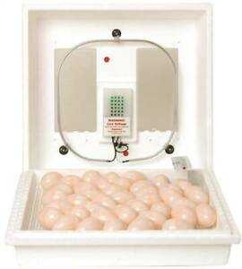 Little Giant 9300 Egg Incubator 110 V Styrofoam