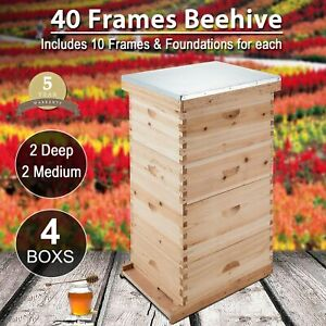 40 frame Size Beekeeping Kit Bee Hive House Frame Beehive 20 Deep 20 Medium