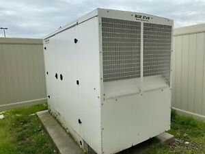 Blue Star Power Systems International Natural Gas Whole Warehouse Generator