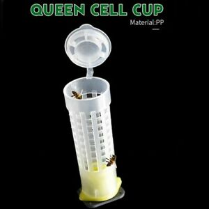 Bee Cell Cups 100 Pcs Kit Queen Bee Hair Roller Cages Plastic Beekeeper Tools