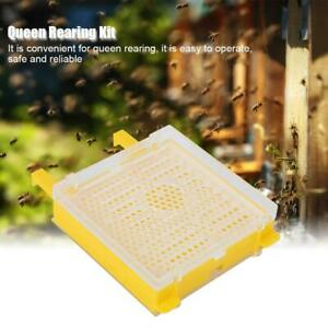 Queen Rearing System Cultivating Box Cage Set Bee Beekeeping Tools Equipment Kit
