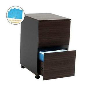 Bestier 2 Drawer File Cabinet With 20 Free A4 File Holders Office Drawer With Wh