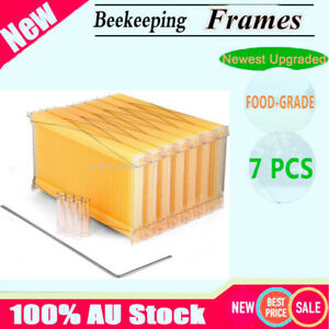Usa 7pcs Auto Honey Hive Beehive Frames Beekeeping Wooden House Beehive Boxes