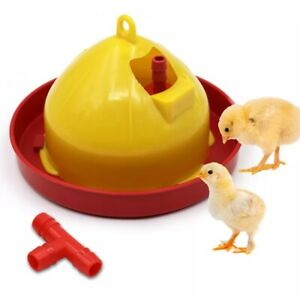 Chicken Automatic Drinker Brooder Feeding Tool Chick Feeder Cup Poultry Supplies