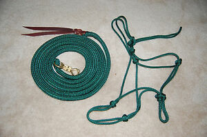 12' LEAD WITH TWIST SNAP & SOFT ROPE HALTER FOR PARELLI TRAINING MANY COLORS !