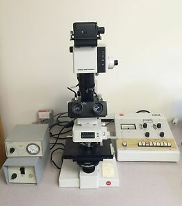 Leitz Ortholux Fluorescence Microscope With Vario orthmat Camera Attachment