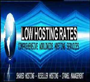 Alpha Reseller Hosting Usa Servers Cpanel whm Zamfoo Ddos Protect 24 7 Support
