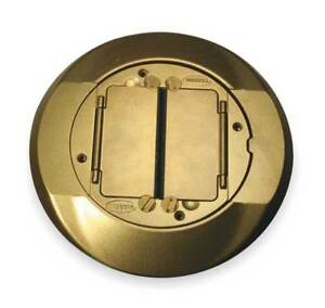 Floor Box Cover Carpet Flange brass Hubbell Wiring Device kellems S1cfcbrs