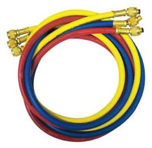 Manifold Hose Set 60 In red yellow blue Imperial 805 mrs