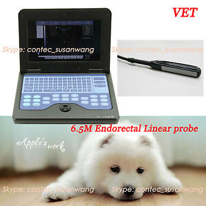 Vet Notebook B ultrasound Diagnostic System Rectal Probe For Animal promotion