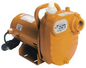 Utility Pump 1 2 Hp Self priming Little Giant B50s