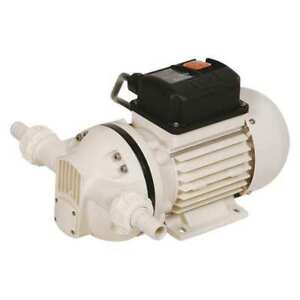 Self priming Pump 1 10 Hp 1 Phase 115vac
