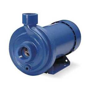Goulds Water Technology 1mc1h9a0 Centrifugal Pump 3 Hp inlet 1 1 4 Npt