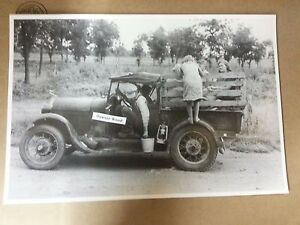 Texas Berry Pickers Model A Roadster Pick Up 12 By 18 Black White Picture