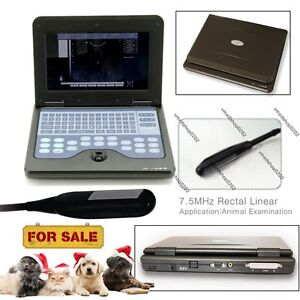 Portable Laptop Vet Machine Veterinary Ultrasound Scanner rectal Probe usa Fedex