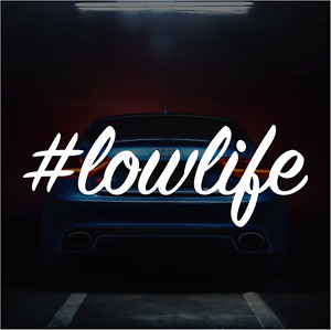 Lowlife Low Life Sticker Vinyl Decal Jdm Lowered Car Truck Suv Fits Honda Acura