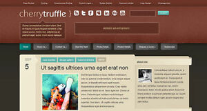 Basic Wordpress Website blog 99 Only 10 day Delivery