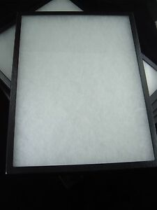 Six Jewelry Display Box Case Riker Mount Box Collectors Frame Box 12 X 16 X 7 8