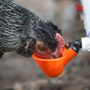 5 Pack Poultry Water Drinking Cups Chicken Hen Quail Plastic Automatic Drinker