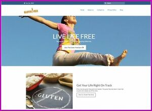 Gluten free Website Business Upto 187 20 A Sale Instant Traffic System