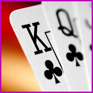 Fully Stocked Winning Poker Systems Website Business free Domain hosting traffic
