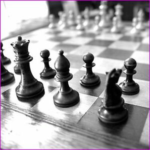 Fully Stocked Chess Enthusiasts Website Business free Domain hosting traffic