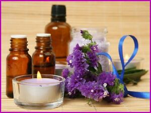 Aromatherapy Website Earn 91 12 A Sale free Domain free Hosting free Traffic