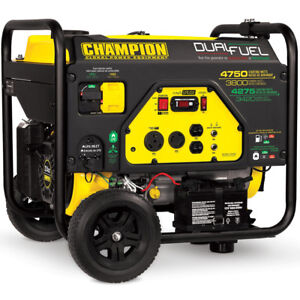 Champion 76533 3800 Watt Electric Start Dual Fuel Portable Generator W Rv