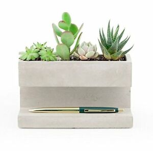 New Concrete Desktop Planter Business Card Pen Holder Succulents