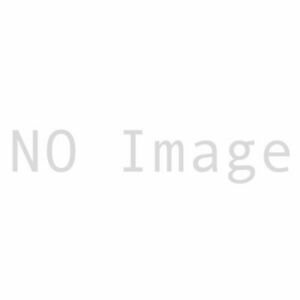 Large Size Mop Bucket With Side Press Wringer 44 Quart Capacity